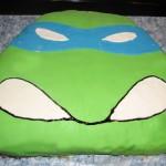 Turtleskaka